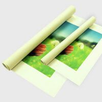 Canvas Rolled