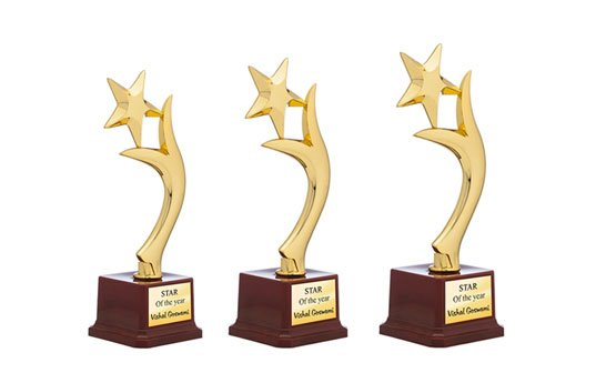 https://www.printstop.co.in/images/products_gallery_images/Star-Performer-trophy-1.jpg